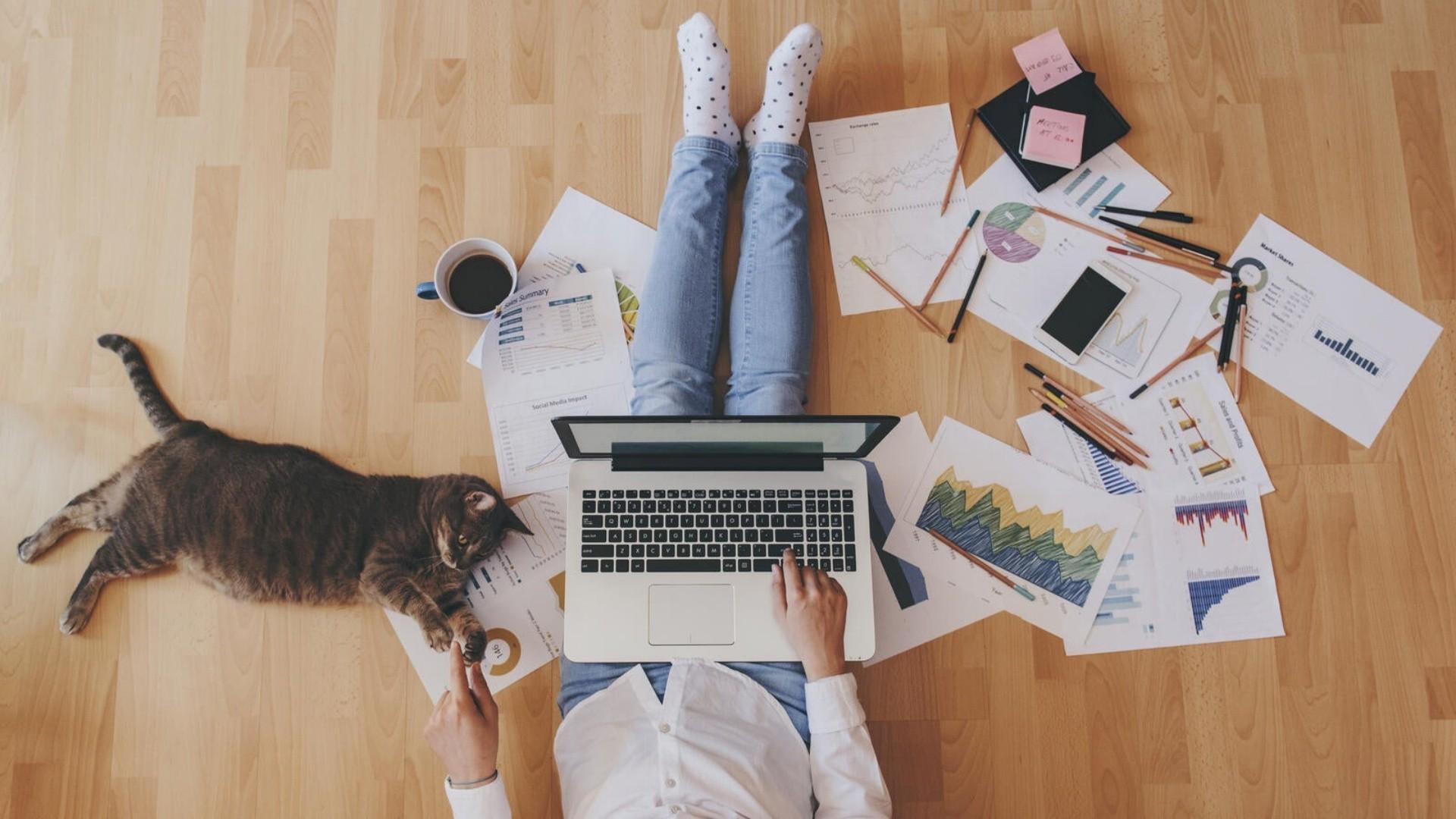 12+1 sfaturi pentru a lucra mai eficient în Home Office